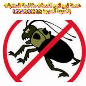 شركة مكافحة حشرات بالمدينة المنورة , شركة مكافحة الحشرات بالمدينة المنورة , شركة مكافحة النمل بالمدينة المنورة , شركة مكافحة الفئران بالمدينة المنورة , شركة مكافحة القوارض بالمدينة المنورة , مكافحة الحشرات بالمدينة المنورة , مكافحة حشرات بالمدينة المنورة , مكافحة الصراصير بالمدينة المنورة , مكافحة الثعابين بالمدينة المنورة , شركة مكافحة حشرات , مكافحة حشرات , ابادة حشرات بالمدينة المنورة ,افضل شركة مكافحة حشرات بالمدينة المنورة , ارخص شركة مكافحة حشرات بالمدينة المنورة