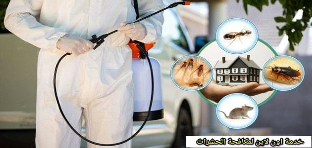 شركة مكافحة حشرات بينبع مع تقديم ضمان يصل لــ 6 اشهر