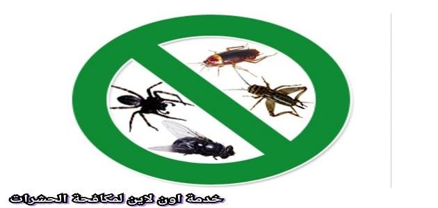شركة مكافحة حشرات بينبع افضل مبيدات الرش بالمملكة