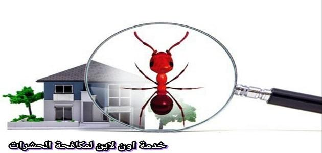 شركة مكافحة حشرات بينبع باقوي وافضل الخصومات تتميز بامتلاك اقوي كادر عمل