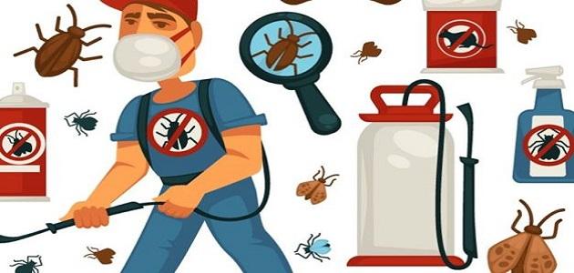شركة مكافحة حشرات بالعيص