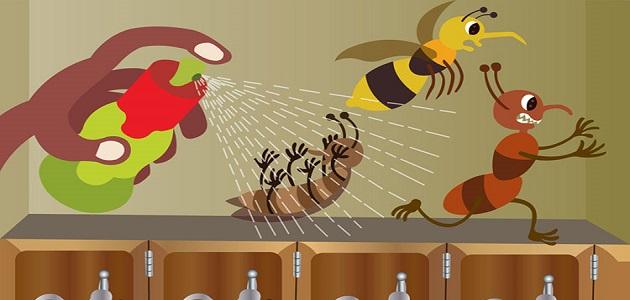شركة مكافحة حشرات بوادي الفرع
